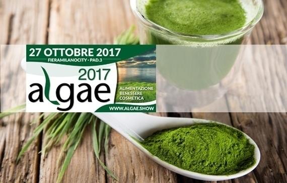 """Tutti i benefici delle alghe ad """"algae 2107"""""""